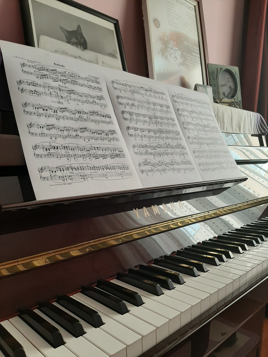 Piyano ve Şan Eğitmenliği
